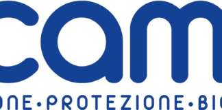 nuovo logo scam