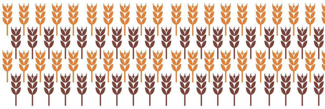 Nuove strategie di precisione nella fertilizzazione azotata per il grano duro italiano di qualità superiore