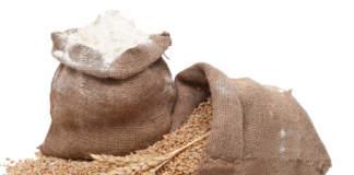 farine proteiche