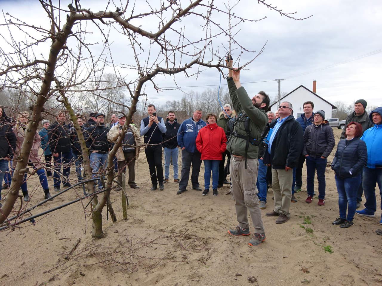 geoplant vivai conquistano ungheria