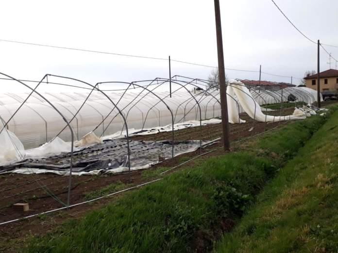 danni in agricoltura a causa del maltempo