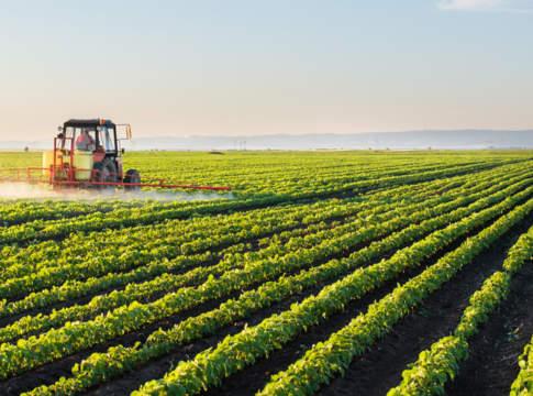 consorzio agrario del friuli