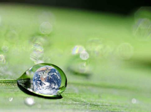 uso sostenibile dei fungicidi