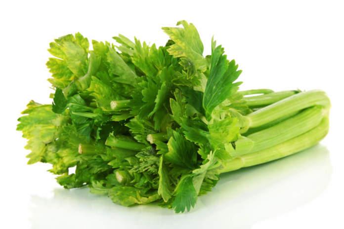 sedano verde biologico