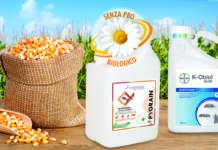 difesa dei cereali con newpharm