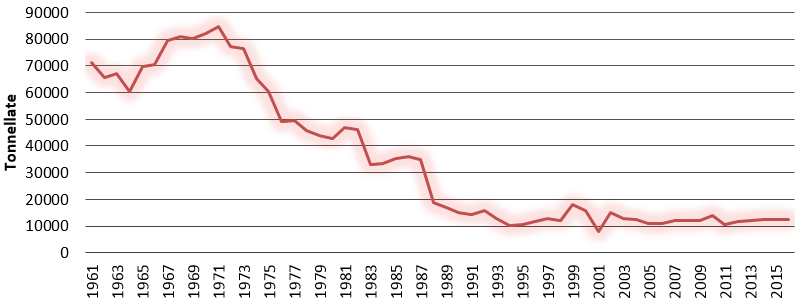 Grafico produzione noci