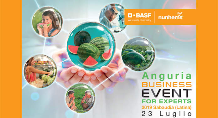 Business Event for Experts Anguria 2019