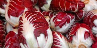 radicchi rossi