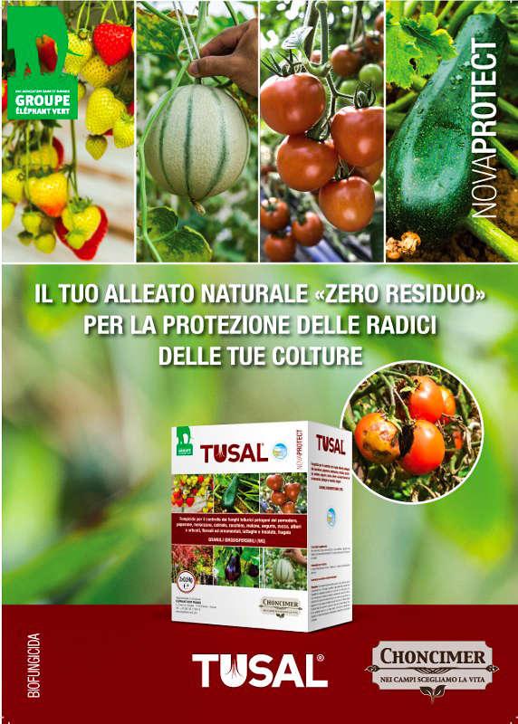 biofungida Tusal