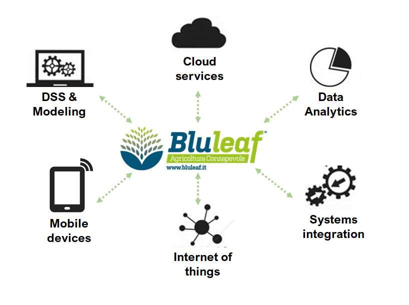 piattaforma Bluleaf