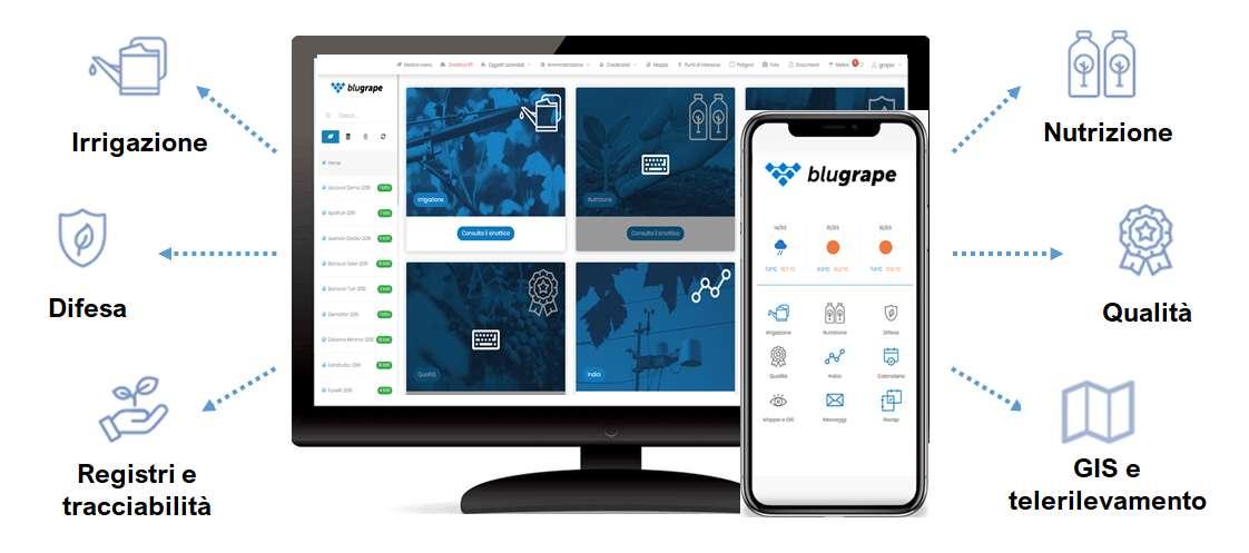 applicazione software BluGrape