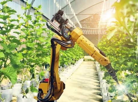 robot intelligenti