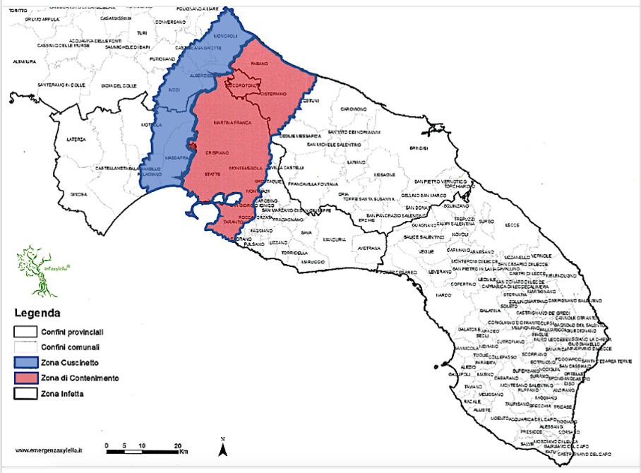 Mappa Xylella Puglia.Xylella I Risultati Di Otto Mesi Di Monitoraggio Delle Piante Infette