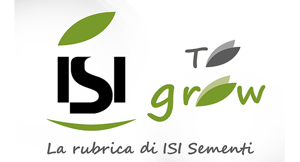 isi to grow logo della rubrica