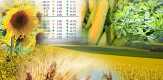 commodity agricole