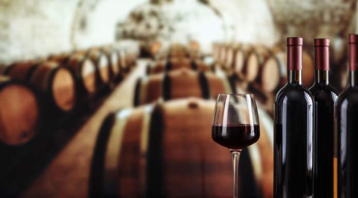 normativa vitivinicola