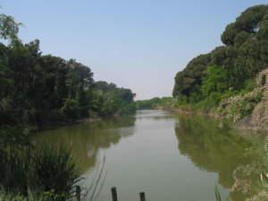 Funzione ambientale Cer - Terra e Vita