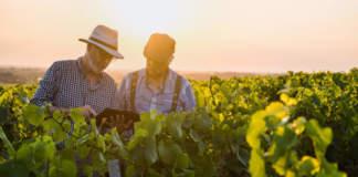 viticoltura 4.0