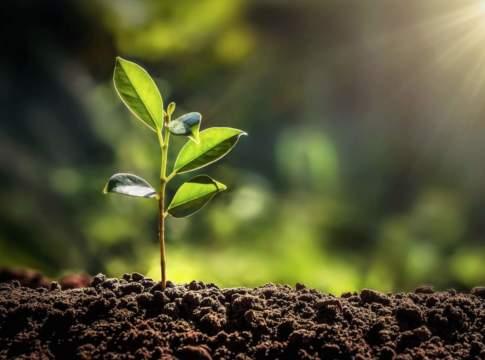 sostenibilità