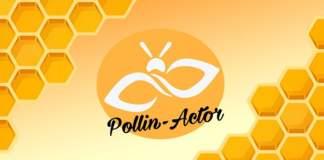 Pollin-Actor