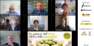 webinar olivicoltura sostenibile