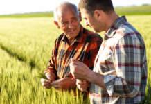 aziende agricole