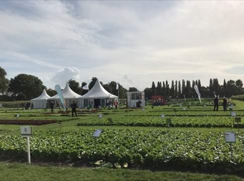 Fields of Innovation Syngenta 2021