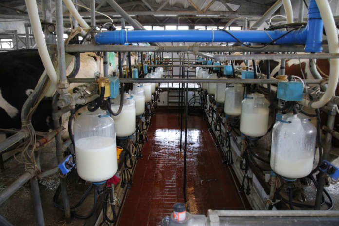 prezzo del latte
