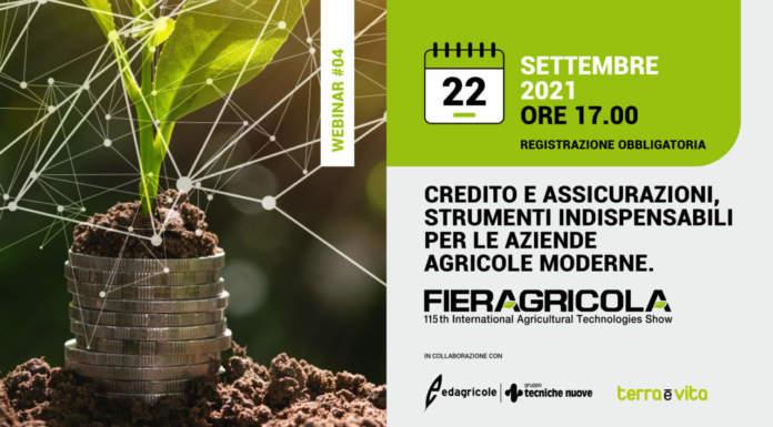 Credito e assicurazioni, strumenti indispensabili per le aziende agricole moderne