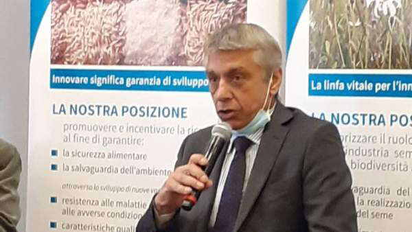 Bruno Caio Faraglia